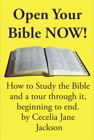 Open-your-Bible-Book